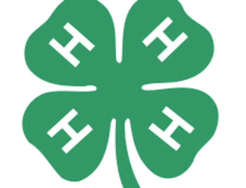 "Nine Auglaize County 4H members received the Nichole ""Niki"" Schaub Scholarship."